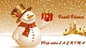 Veselé Vánoce salon 640px